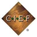 CIEF outcomes abstract